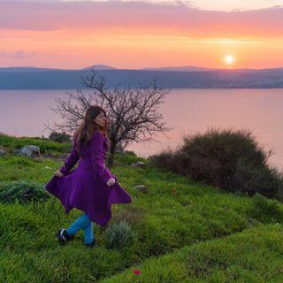Noa Benosh: Landscape & Travel