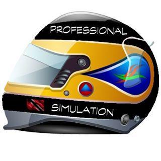 Professional Simulation