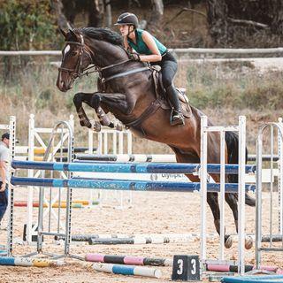HLH Equestrian