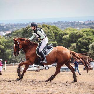 Kiv Agnew Equestrian
