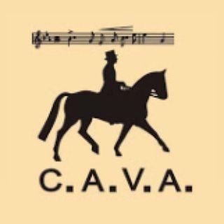 C.A.V.A. Horse 🇪🇸