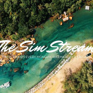 THE SIM STREAM | The Sims 4