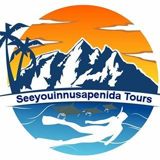 Nusapenida & Bali tours