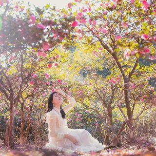 呂蔓娣🦄新竹台北美食|旅遊|穿搭美妝|生活分享