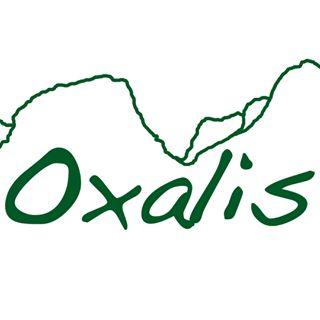 Oxalis Adventure