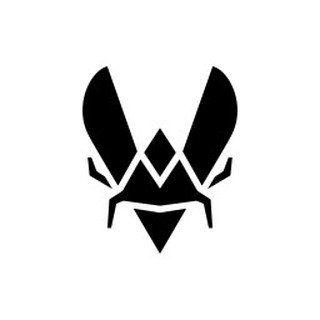 🐝 Team Vitality 🐝