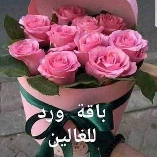 ناصر  العمار الخالدي