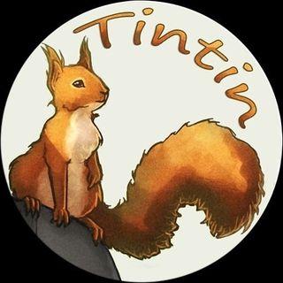 Tintin The Squirrel