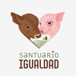 Fundación Santuario Igualdad