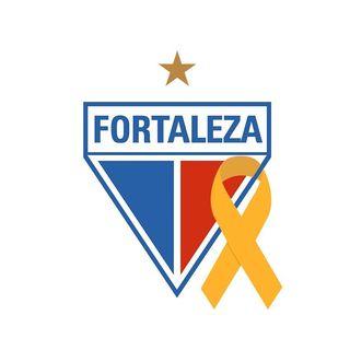 Fortaleza Esporte Clube ⭐️