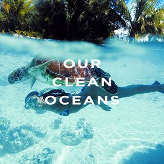 Ourcleanoceans__