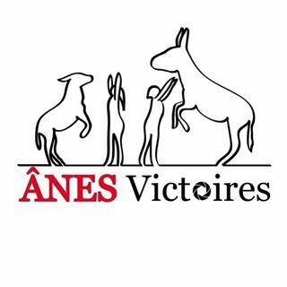 Ânes Victoires