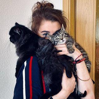 Oskar,Balou & Sarah 🌞