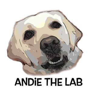 Andie + Abby the Lab