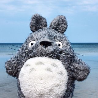 Totoro the Traveller