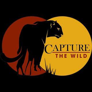 Capture The Wild