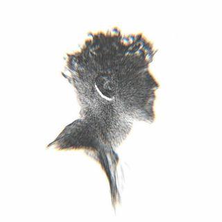 Ledri Vula