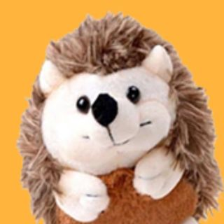 Alfredo The Hedgehog