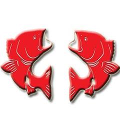 Dicas e Pescas