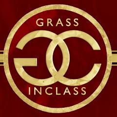 GRASS INCLASS