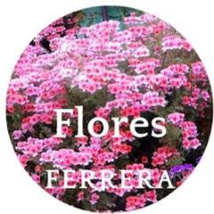 Flores Ferrera