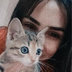 Kitten Masi