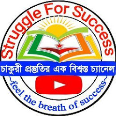 Struggle For Success