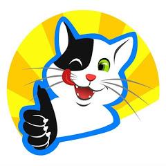 Funny Cats HD