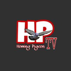 Homing Pigeon TV