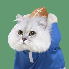 읏디의 고양이타이쿤 Cat Tycoon
