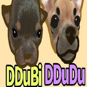 ddudubi_tv