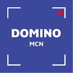 Domino Tiktok Video