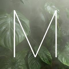 Marek i rośliny