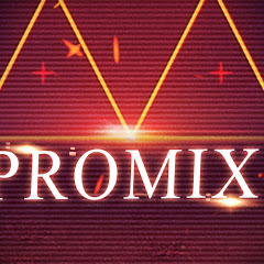 ProMix Данилов