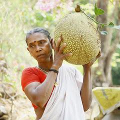 Village Cooking - Kerala