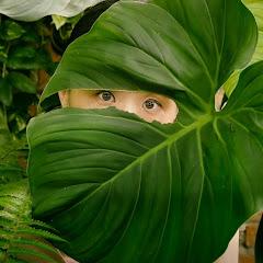 Leafing Around