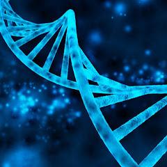 不眠症 改善 l 遺伝子栄養学 l 疲労回復マスタークラス