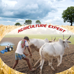 Agriculture Expert