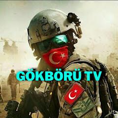 GÖKBÖRÜ TV