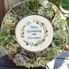 【Olive&Succulentgarden】はなのVlog
