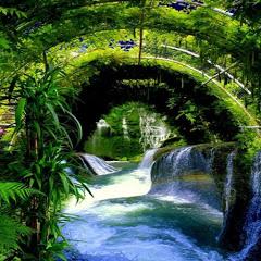 Ẩm thực du lịch Việt Nam