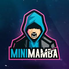 Mini Mamba