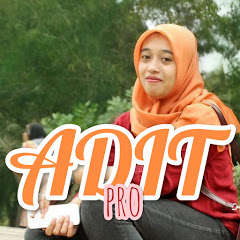 ADIT pro