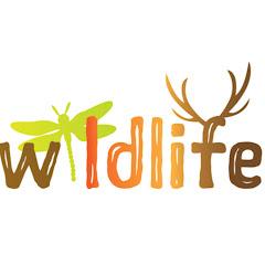 Wildlife Documentaries & Nature Documentaries