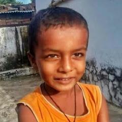 Aditya R Pal