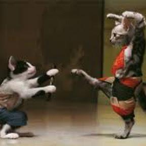 nunchaku martials arts