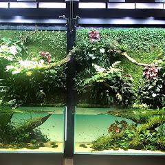 水世界水族馆