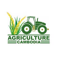 Agriculture Cambodia