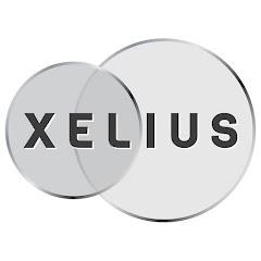 XELIUS - ОБУЧЕНИЕ ТРЕЙДИНГУ И ИНВЕСТИЦИЯМ