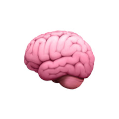 서거니의 뇌 🧠